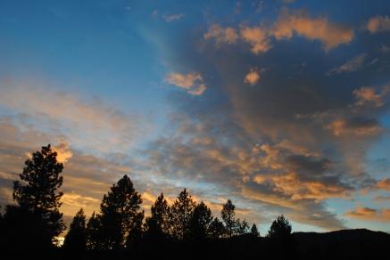 Oregon, 2013